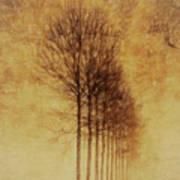 Textured Eerie Trees Art Print