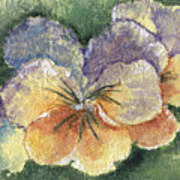 Textured Pansy Art Print