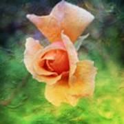 Textured Rose 3 Art Print