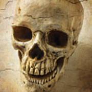 Textured Skull Art Print