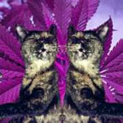 Tha 2piece Kitty Art Print