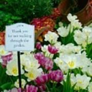 Thank You For Not Walking Thru The Garden Art Print