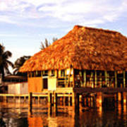 Thatched Roof Placencia Art Print