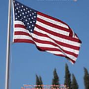The American Flag Art Print
