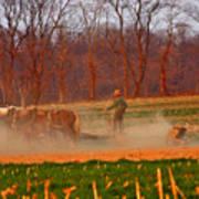The Amish Way Art Print