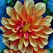 The Art In Flowers 2 Art Print