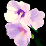 The Artful Hibiscus Art Print