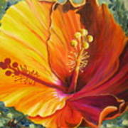 The Artisan Hibiscus Art Print