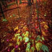 Autumn V6 Art Print