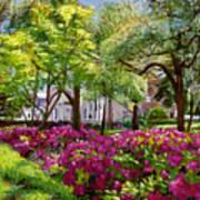 The Azaleas Of Savannah Print by David Lloyd Glover