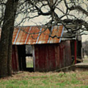 The Barn Out Back Art Print
