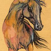 The Bay Arabian Horse 9 Art Print