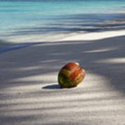 The Beaches Of Rarotonga Art Print