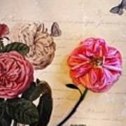 The Beauty Of A Dried Rose Art Print