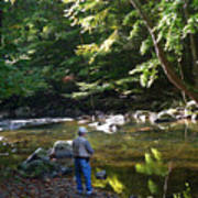 The Beauty Of Trout Fishing 2 - Original Photography Art Print