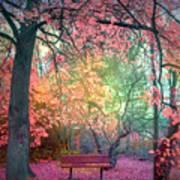 The Bench That Dreams Art Print