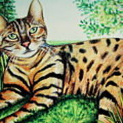 The Bengal Art Print