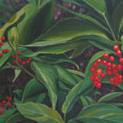 The Berries On Guanella Pass Art Print