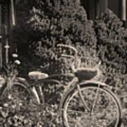 The Bicycle Garden II Art Print