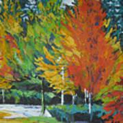 The Big Red Tree Art Print