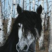 The Birch Horse Art Print