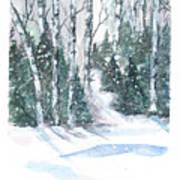 The Birch Trees Art Print