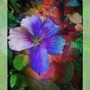 The Blue China Rose  Art Print