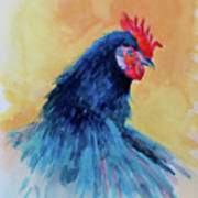 The Blue Rooster Art Print