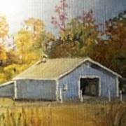 The Blue Shed Art Print