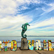 The Boy On The Seahorse Pano Art Print