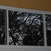 The Branch Window Art Print
