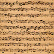 The Brandenburger Concertos Art Print