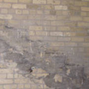The Brick Wall - Historic Bldg Art Print