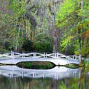The Bridges In Magnolia Gardens Art Print