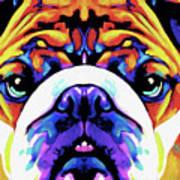 The Bulldog By Nixo Art Print