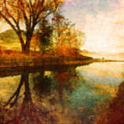 The Calm By The Creek Art Print