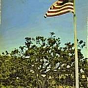 The Casements Flag Flying Art Print