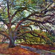 The Century Oak Art Print