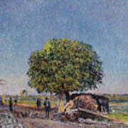 The Chestnut Tree At Saint-mammes Art Print