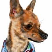 The Chihuahua Art Print