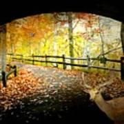 Under The Cobble Stone Bridge Art Print