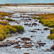 The Colorado Tundra Art Print