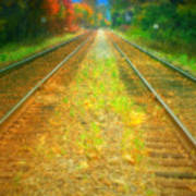 The Colour Along The Tracks Art Print