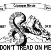 The Culpepper Minute Men Art Print