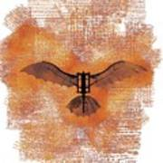 The Da Vinci Flying Machine Art Print