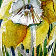 The Daffodil Art Print