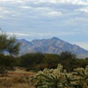 The Desert Landscape Art Print