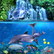 The Dolphin Family Art Print
