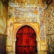 The Door To Alhambra Art Print