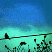 The Dove Above 2 Art Print